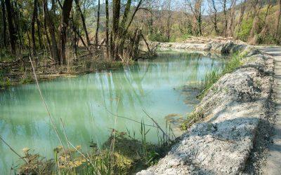 Arten- und Lebensraumschutz in Rohstoffgewinnungsbetrieben in Niederösterreich